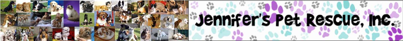 Jennifer's Pet Rescue, Inc.